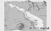 Gray Panoramic Map of Valle Fertil