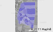 Political Shades Map of Santiago del Estero, desaturated