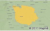 Savanna Style 3D Map of San Martin