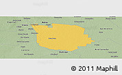 Savanna Style Panoramic Map of San Martin
