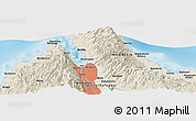 Shaded Relief Panoramic Map of Palu