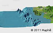 Satellite Panoramic Map of Olongapo