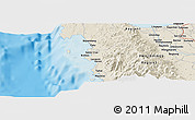 Shaded Relief Panoramic Map of San Carlos