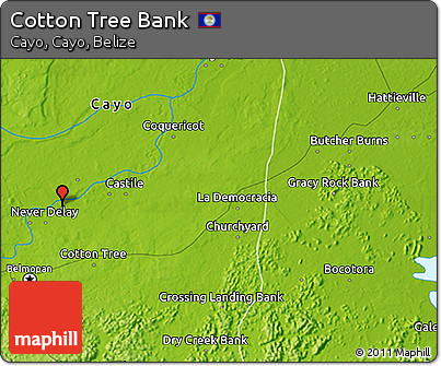 Physical 3D Map of Cotton Tree Bank