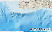 """Shaded Relief 3D Map of the area around 17°50'55""""N,67°4'29""""W"""