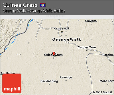 Shaded Relief 3D Map of Guinea Grass