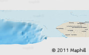 Shaded Relief Panoramic Map of Delita