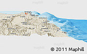 Shaded Relief Panoramic Map of Muscat