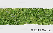 Satellite Panoramic Map of Longlin