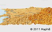 Political Panoramic Map of Kumamoto