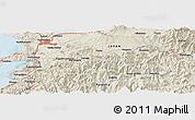 Shaded Relief Panoramic Map of Kumamoto