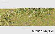 Satellite Panoramic Map of Cañitas