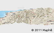 """Shaded Relief Panoramic Map of the area around 36°47'25""""N,137°46'30""""E"""