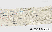 Shaded Relief Panoramic Map of Frenchtown