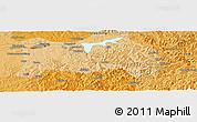 Political Panoramic Map of Fushun