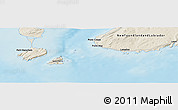 """Shaded Relief Panoramic Map of the area around 46°51'18""""N,56°1'29""""W"""
