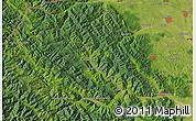 "Satellite Map of the area around 47°41'6""N,25°34'30""E"