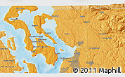 Political 3D Map of Driftwood Shores