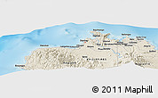 Shaded Relief Panoramic Map of Dipolog
