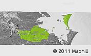 Physical Panoramic Map of Brisbane, desaturated