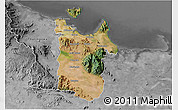 Satellite 3D Map of Townsville, desaturated