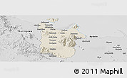 Shaded Relief Panoramic Map of Townsville, desaturated