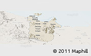 Shaded Relief Panoramic Map of Townsville, lighten