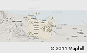Shaded Relief Panoramic Map of Townsville, semi-desaturated