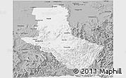 Gray Panoramic Map of Delatite