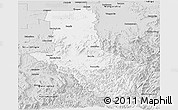 Silver Style Panoramic Map of Delatite