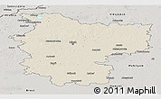 Shaded Relief Panoramic Map of Minsk, semi-desaturated