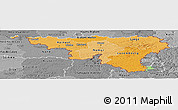 Political Shades Panoramic Map of Wallonne, desaturated