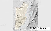 Shaded Relief 3D Map of Belize, desaturated