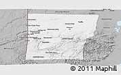 Gray Panoramic Map of Cayo