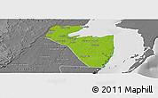 Physical Panoramic Map of Corozal, desaturated