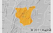 Political Map of Natingou, lighten, desaturated