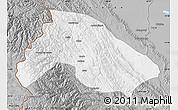 Gray Map of Franz Tamayo