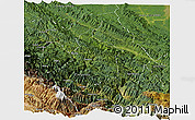Satellite Panoramic Map of Sud Yungas