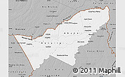 Gray Map of Pando