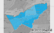 Political Shades Map of Pando, desaturated