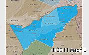 Political Shades Map of Pando, semi-desaturated