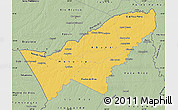 Savanna Style Map of Pando