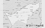 Silver Style Map of Pando