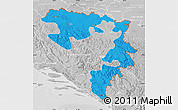 Political Map of Republika Srpska, lighten, desaturated