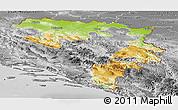 Physical Panoramic Map of Republika Srpska, desaturated