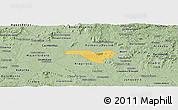 Savanna Style Panoramic Map of Igaci