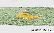 Savanna Style Panoramic Map of Lima Duarte
