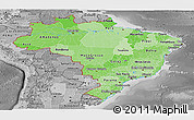 Political Shades Panoramic Map of Brazil, desaturated