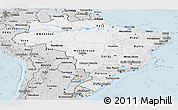 Silver Style Panoramic Map of Brazil