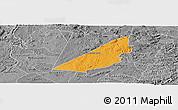 Political Panoramic Map of Barra de S. Rosa, desaturated